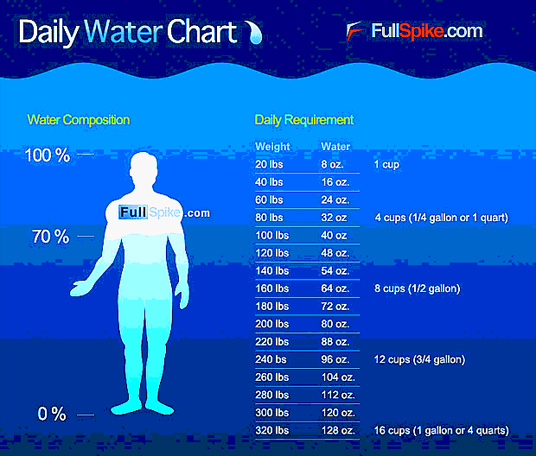 Daily water requirements by weight - athletes will require more