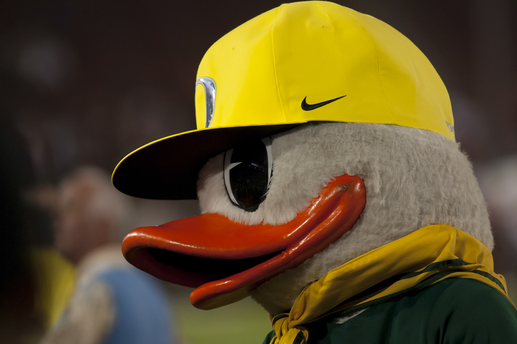 Photo: Craig Strobeck A quiet night for the Duck